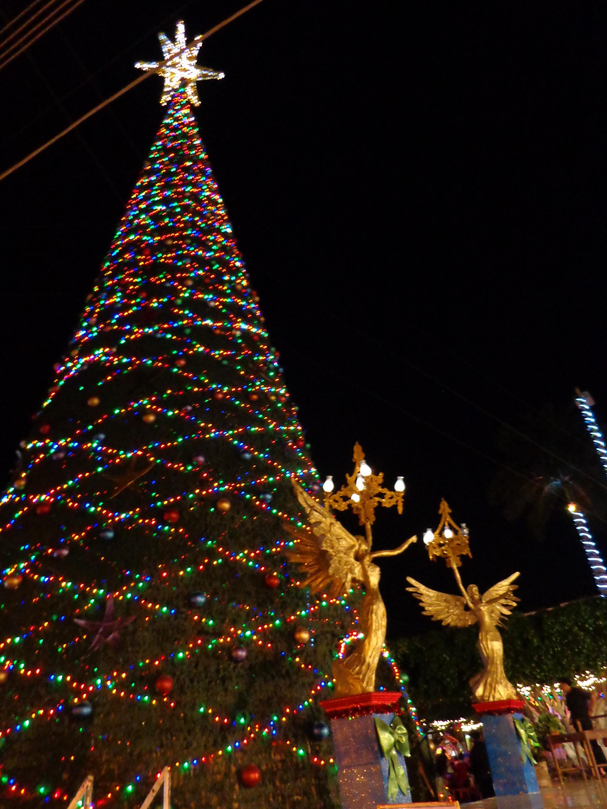 Navidad 2013 paz en la tierra a los hombres de buena - Deseos para la navidad ...